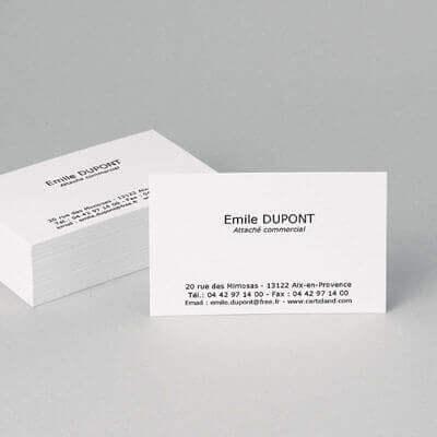 Exemple De Cartes Visite Classique Minimaliste
